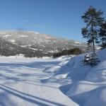 Winter 07 S