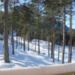 winter 17 H